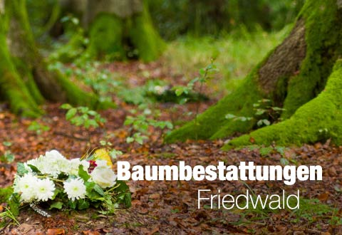 Baumbestattungen Friedwald in Dinslaken